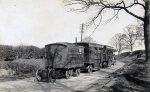 Bostock wagons...late 1800's.jpg
