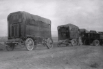 Ringling wagons being taken to the lot...1930's.JPG