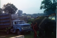 Some things never change. An elephant drags a sticking truck on a muddy lot ...1971.JPG