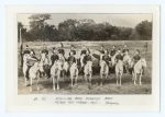 Ringling Mounted Band    1897.jpg