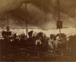 Under the big top   Cooper & Baily   1876.jpg