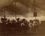Under the big top   Cooper & Baily   1876.jpg