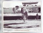 McGaws Motor Circus..1957.JPG