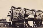 1930's Reptile Show