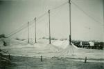 Capell-Bros-sawbucking-poles.jpg