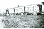 Al, G.Barnes wagons on a mud lot....1930's.JPG