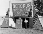 Hartzell's octopus show (2).jpg
