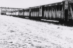 1930's Animal Stock Cars.On The Ringling Brothers Circus Train