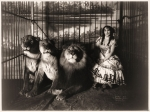 Adgie & The Lions..1899.JPG