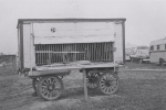 Cat wagon on the Cetlin Wilson Shows...1952.JPG