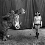 Hippo & girl.jpg