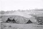 Cetlin Wilson fairgrounds...1951.JPG