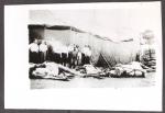 Lightning struck horses. Christy Bros. ...1926.JPG