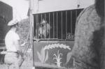 Ringling Bros. hippo wagon...1952.JPG