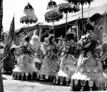 Ringling opening..1946.JPG