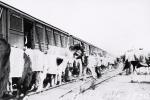 Ringling train..1930's.JPG
