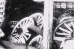 Wheels in the barn...1930's.JPG
