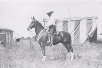 Tom Mix on horseback...1930's.JPG