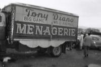 Tony Diano menageri on the Christiani Bros. Circus...1956.JPG