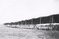 Stock tent on the Miller Bros. 101 Ranch Wild West Shows...1930's.JPG