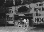 giant hod show..1940's.jpg
