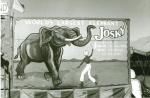 Josky banner.jpg