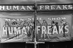 10-1 Side Show Human Freaks Banner 1940's