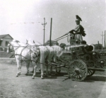 Great Floto Chariot   1905.jpg
