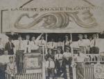 Snake show    1910.JPG